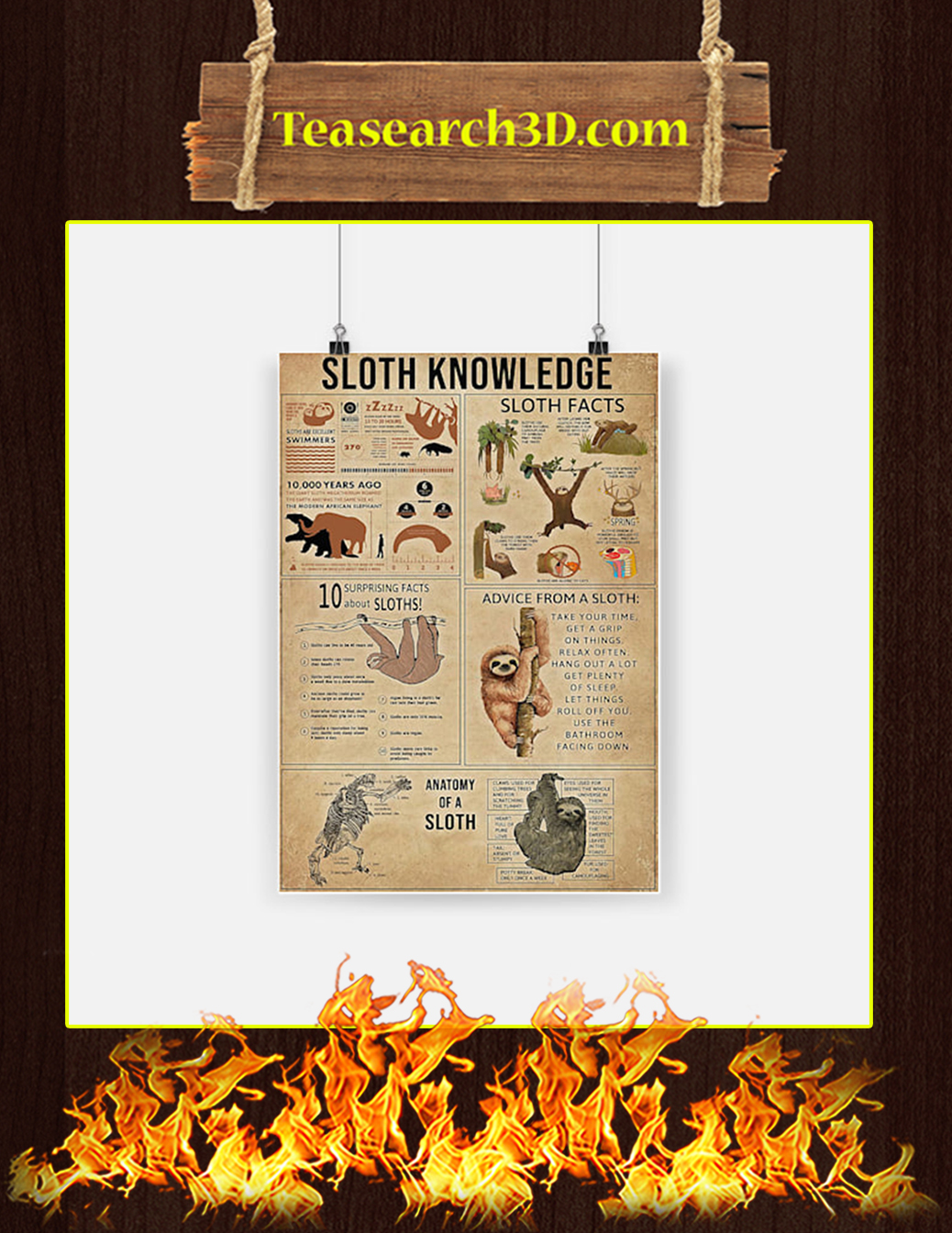Sloth Knowledge Poster - A1