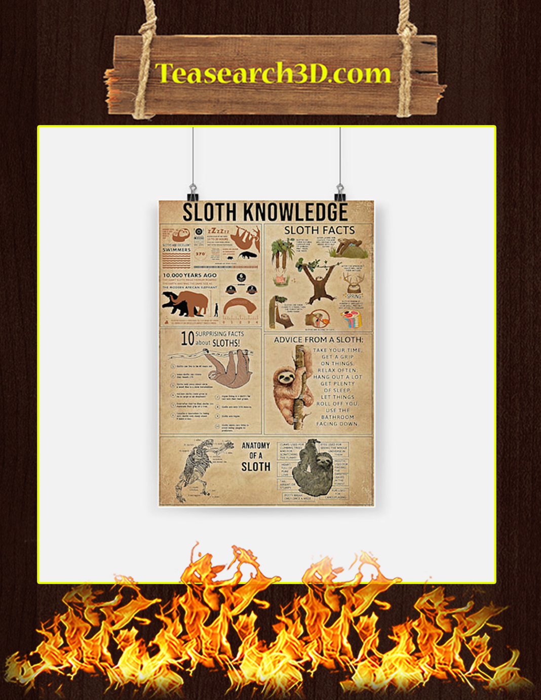 Sloth Knowledge Poster - A2