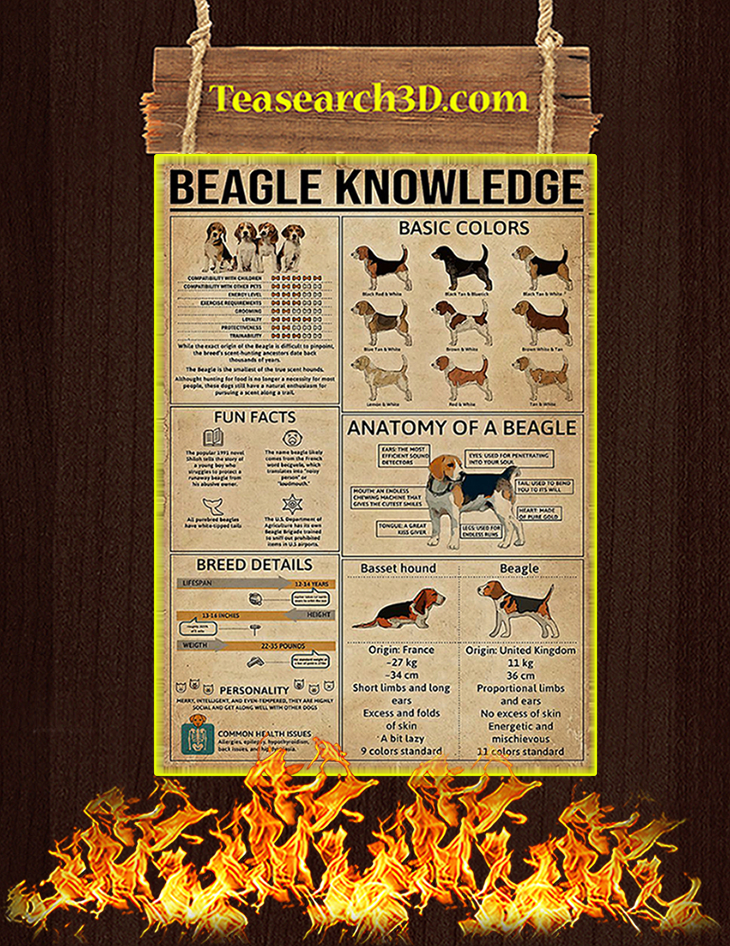 Beagle Knowledge Poster A1