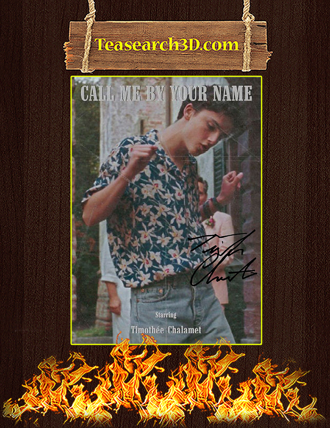 Call Me By Your Name Timothee Chalamet Poster A2