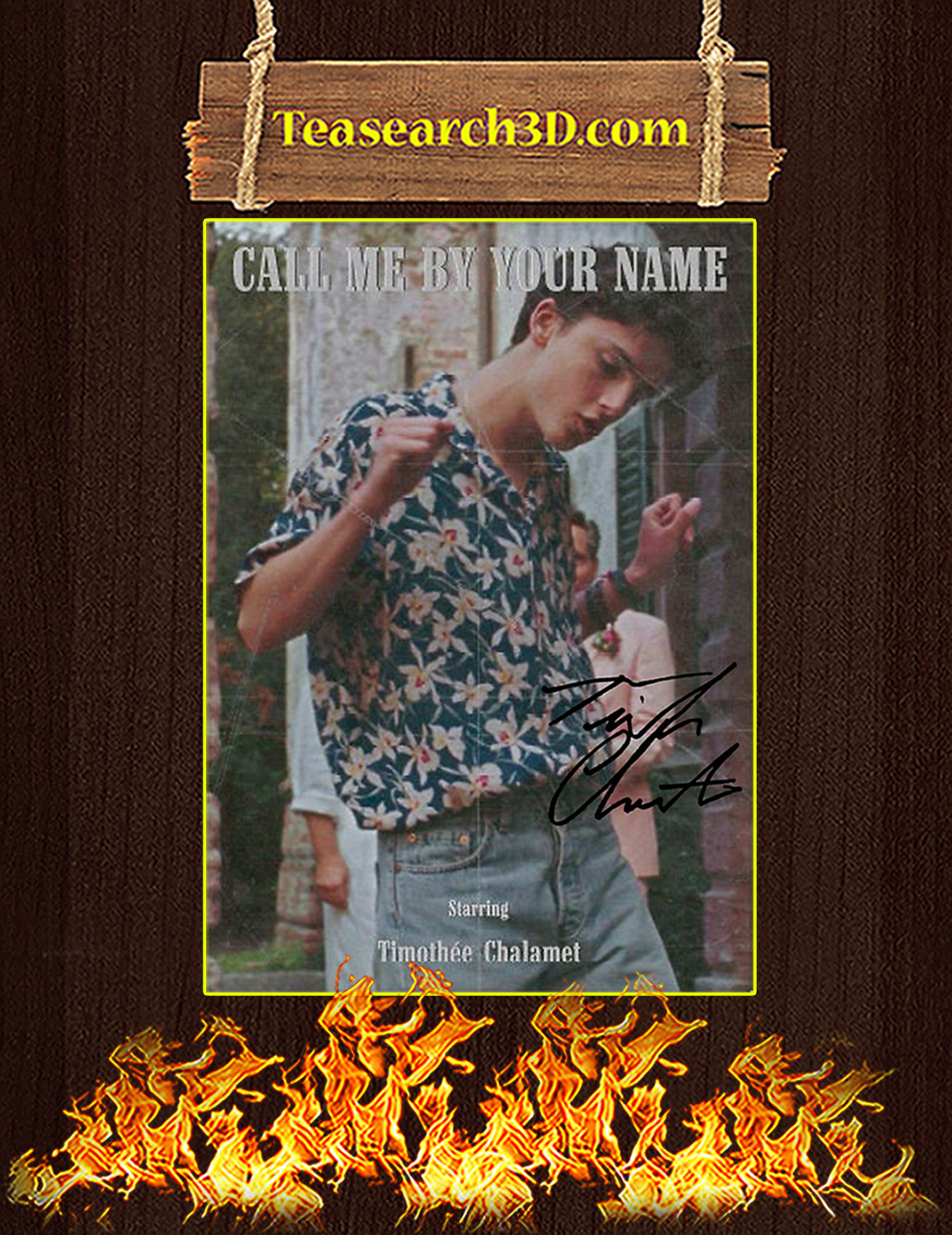 Call Me By Your Name Timothee Chalamet Poster A3