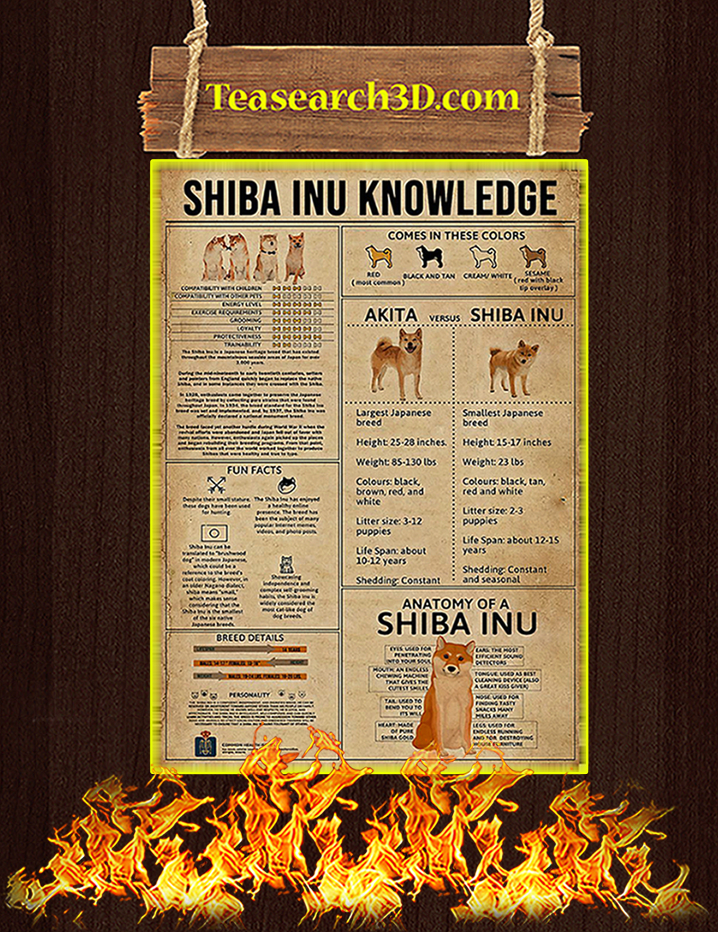 Shiba Inu Knowledge Poster A1