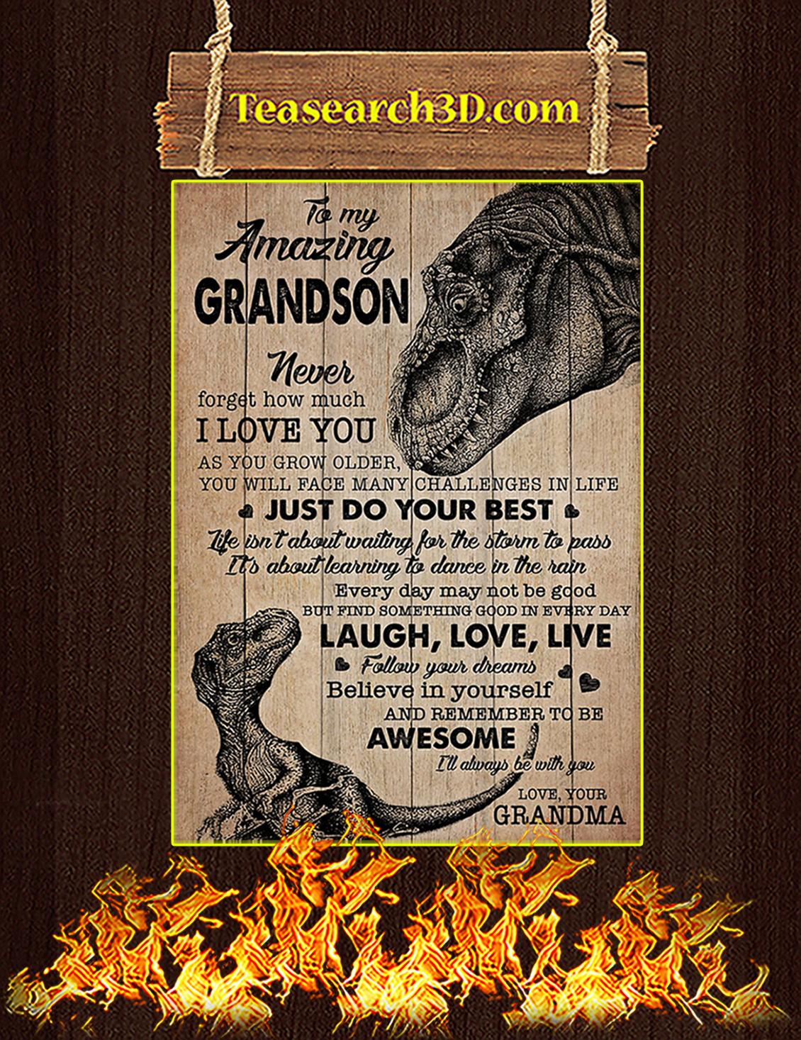 To My Amazing Grandson Grandma Dinosaurs Poster A3