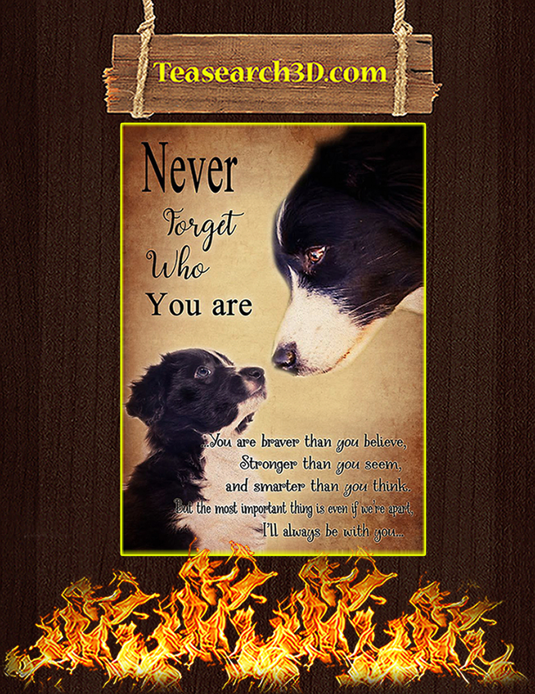 Border Collie Never forget who you are poster A2