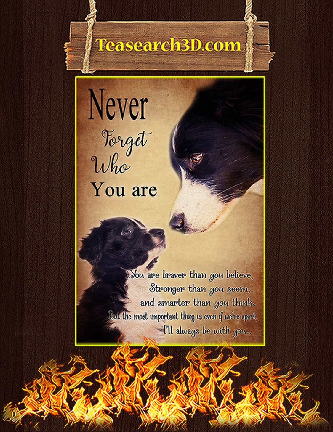Border Collie Never forget who you are poster A3