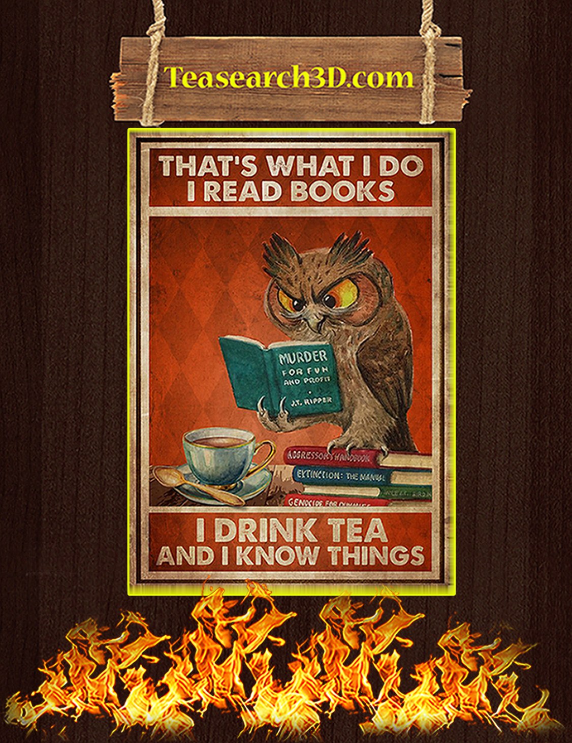 Owl That's what I do I read books poster A3