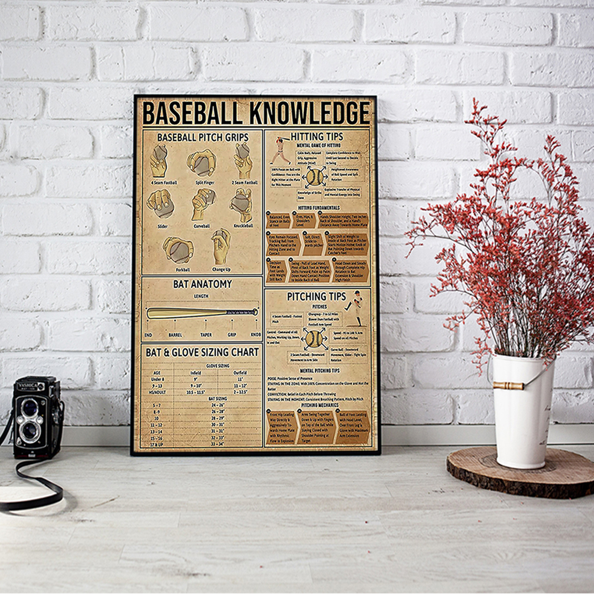 Baseball knowledge poster A2