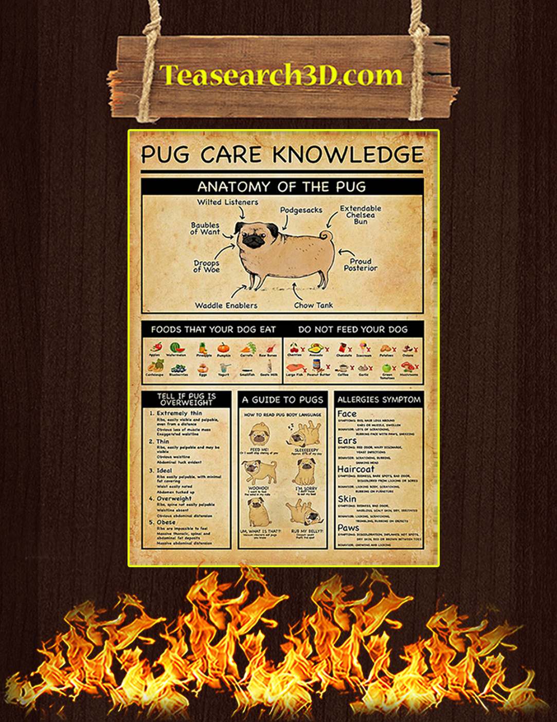 Pug care knowledge poster A2