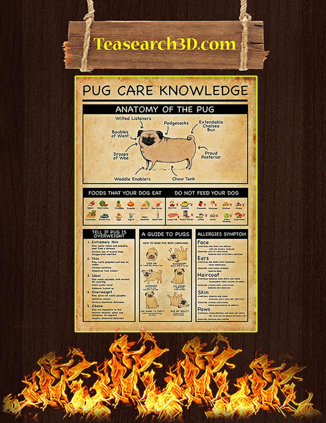 Pug care knowledge poster A3