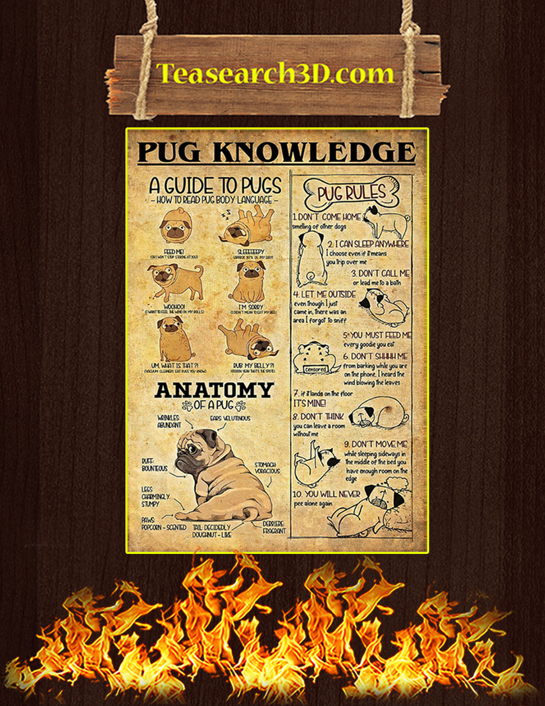 Pug dog knowledge poster A2
