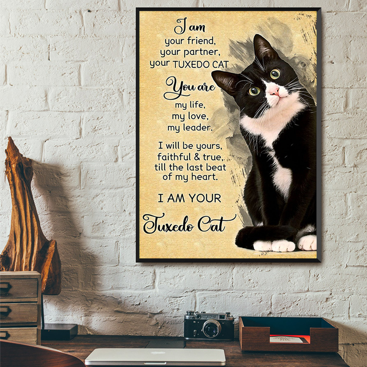 I Am Your Friend Your Partner Your Tuxedo Cat Poster A2