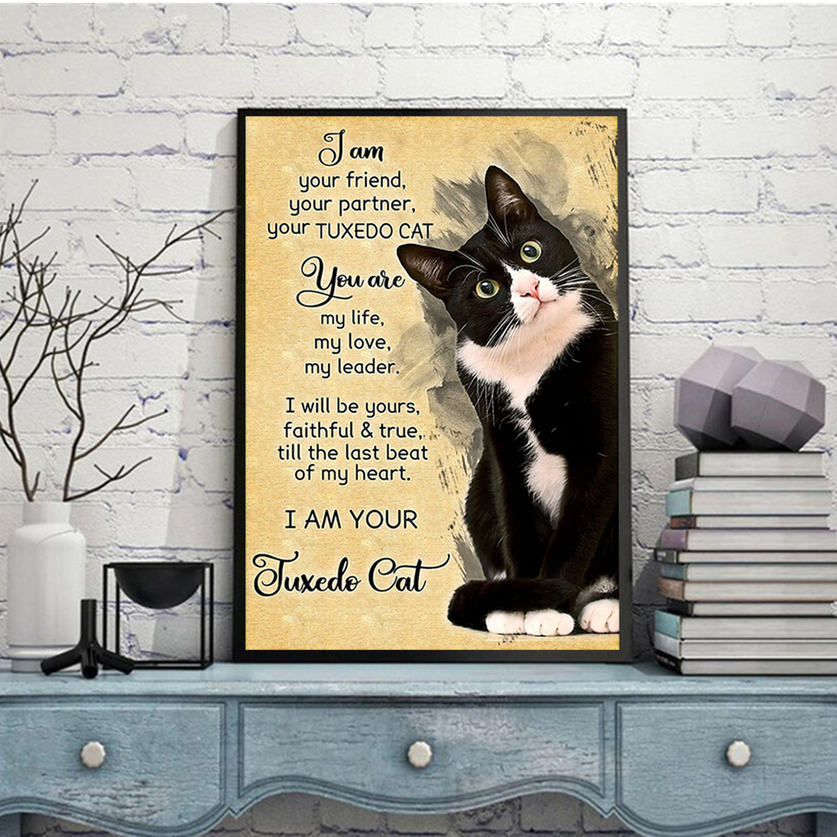 I Am Your Friend Your Partner Your Tuxedo Cat Poster A3