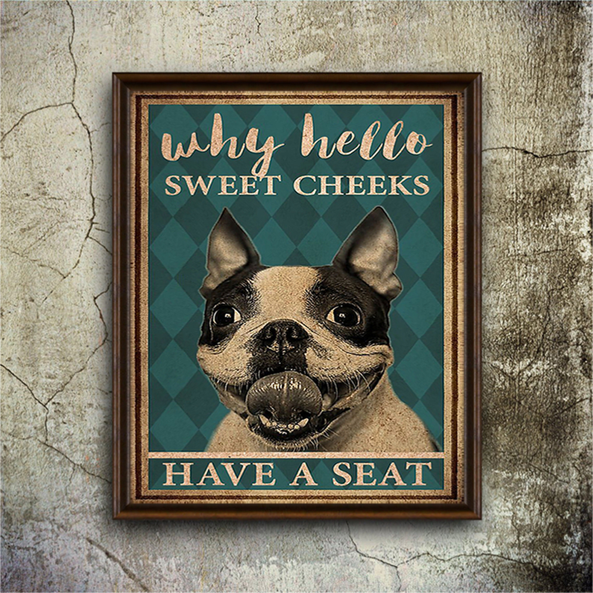Boston terrier why hello sweet cheeks have a seat poster A3
