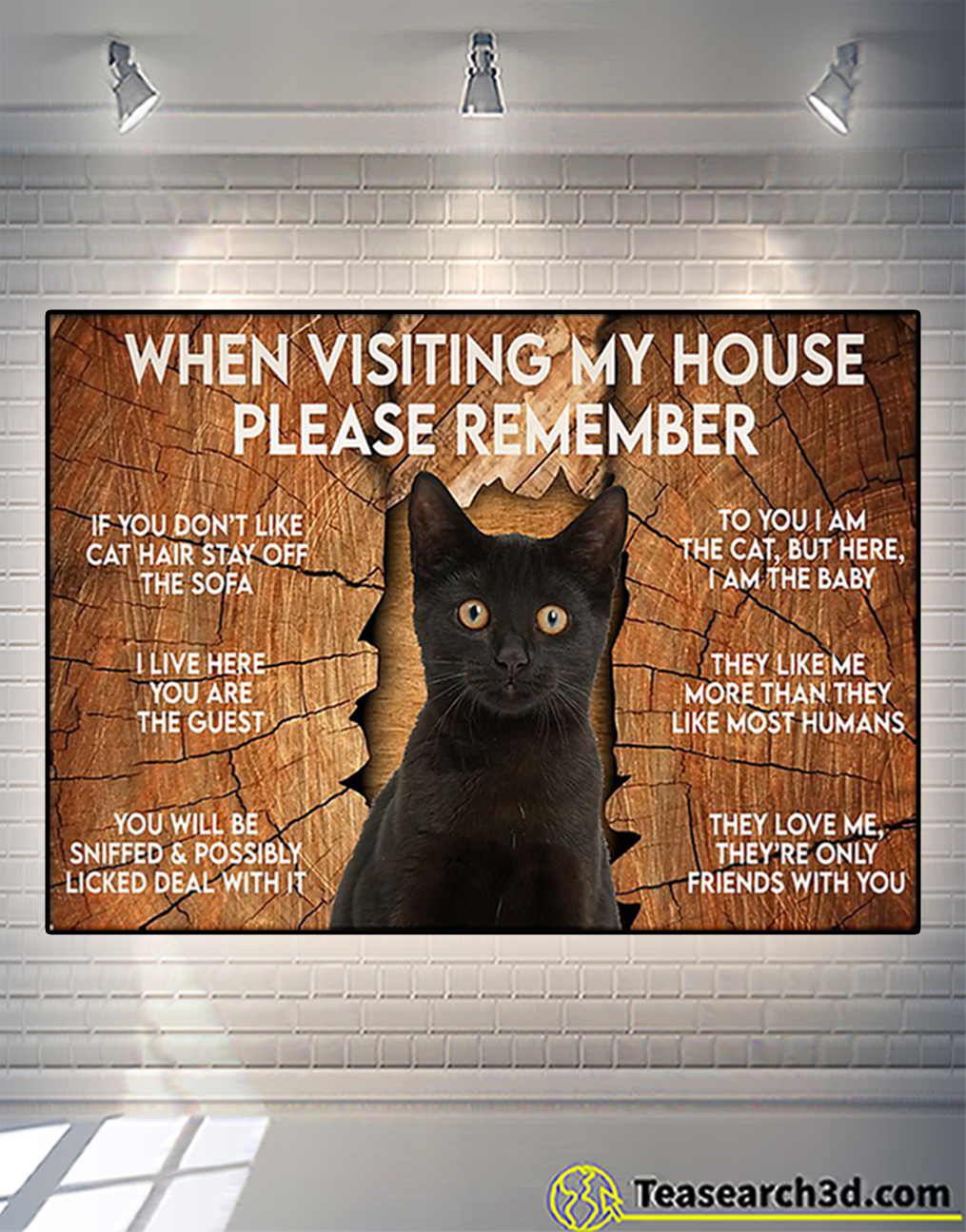 Cat when visiting my house please remember poster