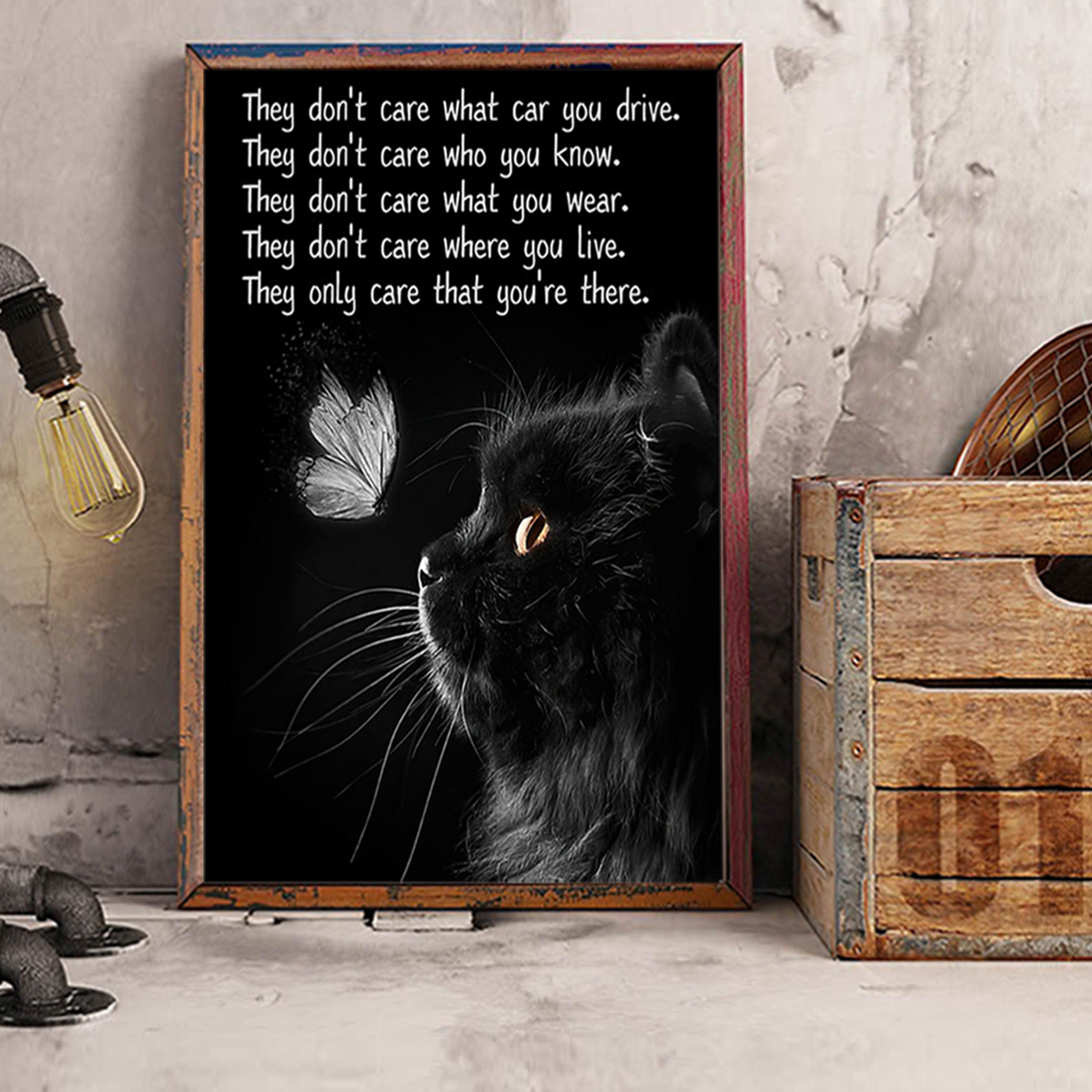 Cat they don't care what car you drive poster A1
