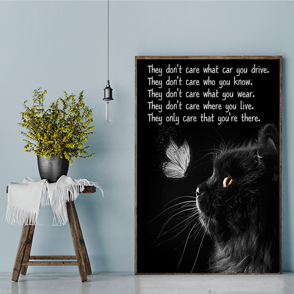 Cat they don't care what car you drive poster A3