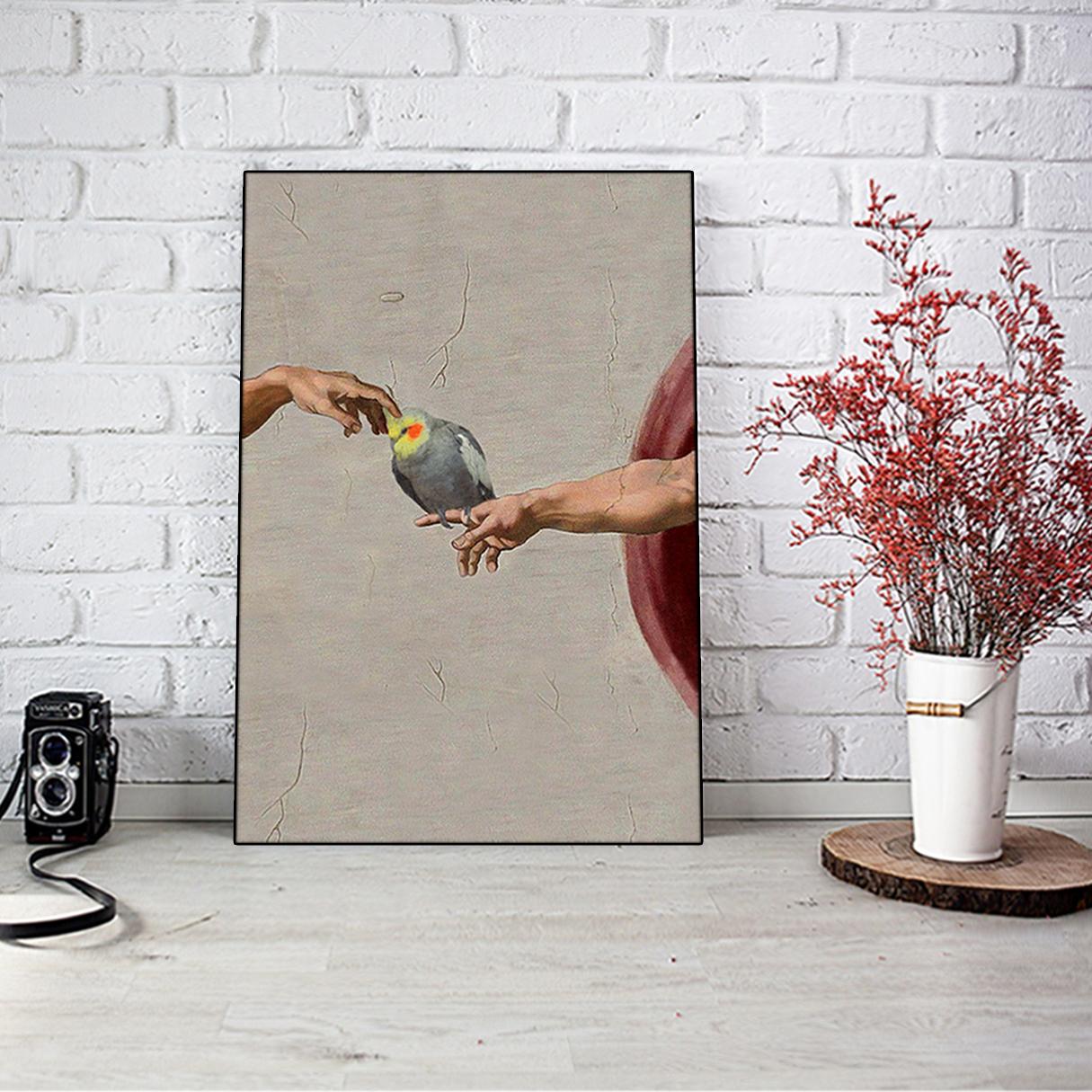 Cockatiel creation of adam poster A1