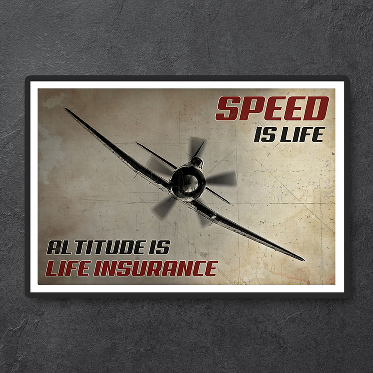 Pilot speed is life altitude is life insurance poster A1