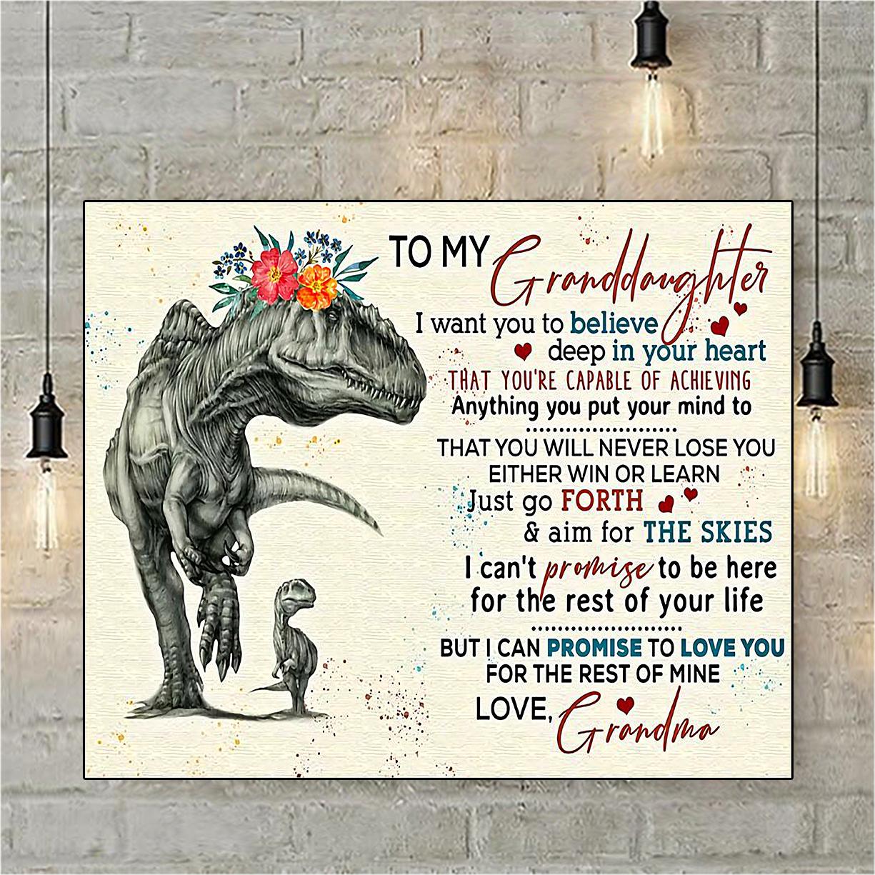 Dinosaur to my granddaughter love grandma poster A3