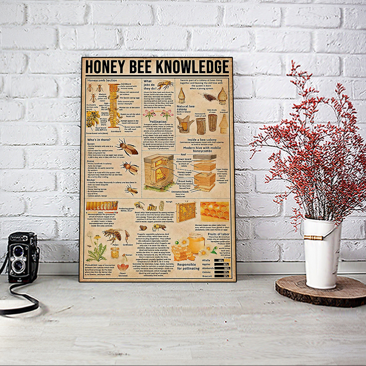 Honey bee knowledge poster A1