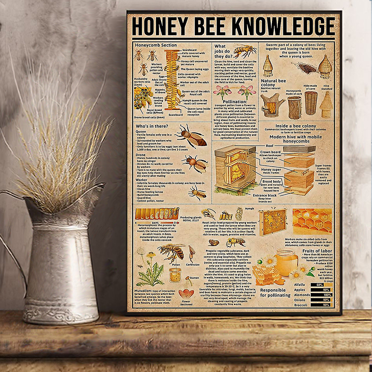 Honey bee knowledge poster A3