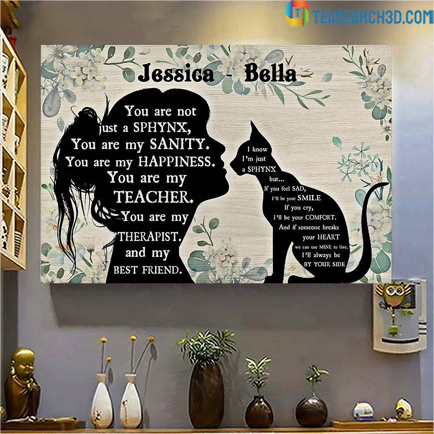 Personalized custom name you are not just a Sphynx poster A2