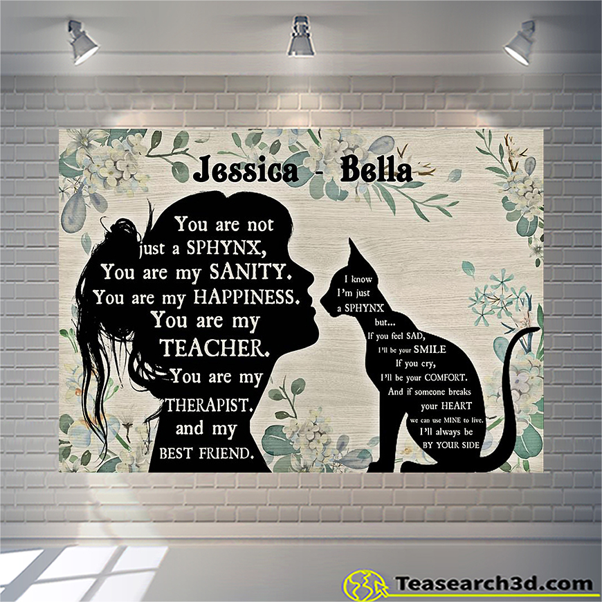 Personalized custom name you are not just a Sphynx poster A3