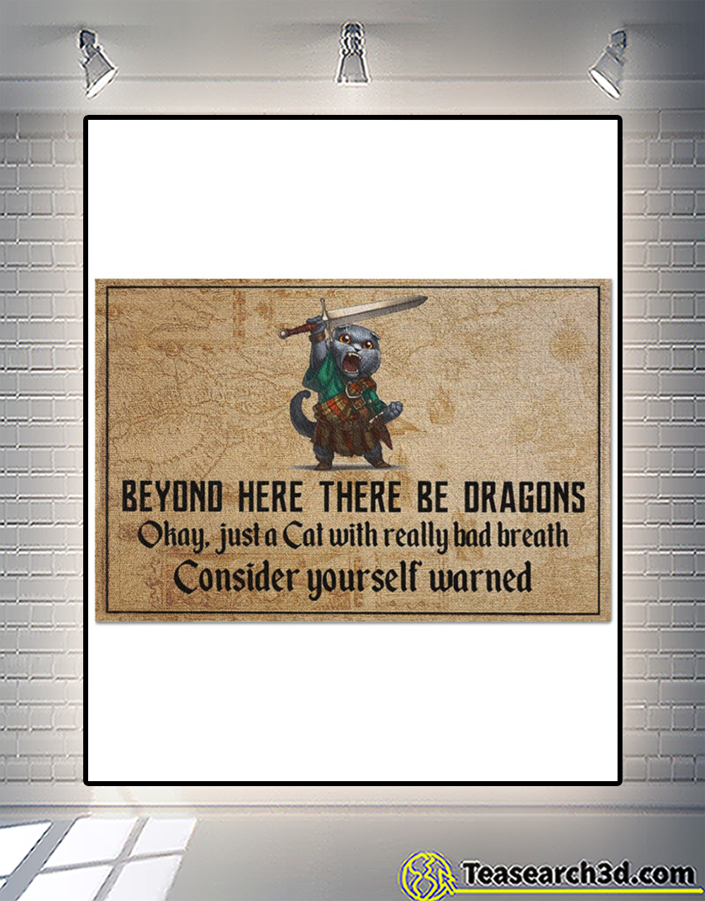 Beyond here there be dragons okay just a cat doormat