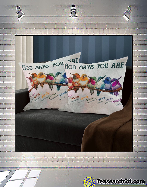 Hummingbird god says you are pillowcase 3