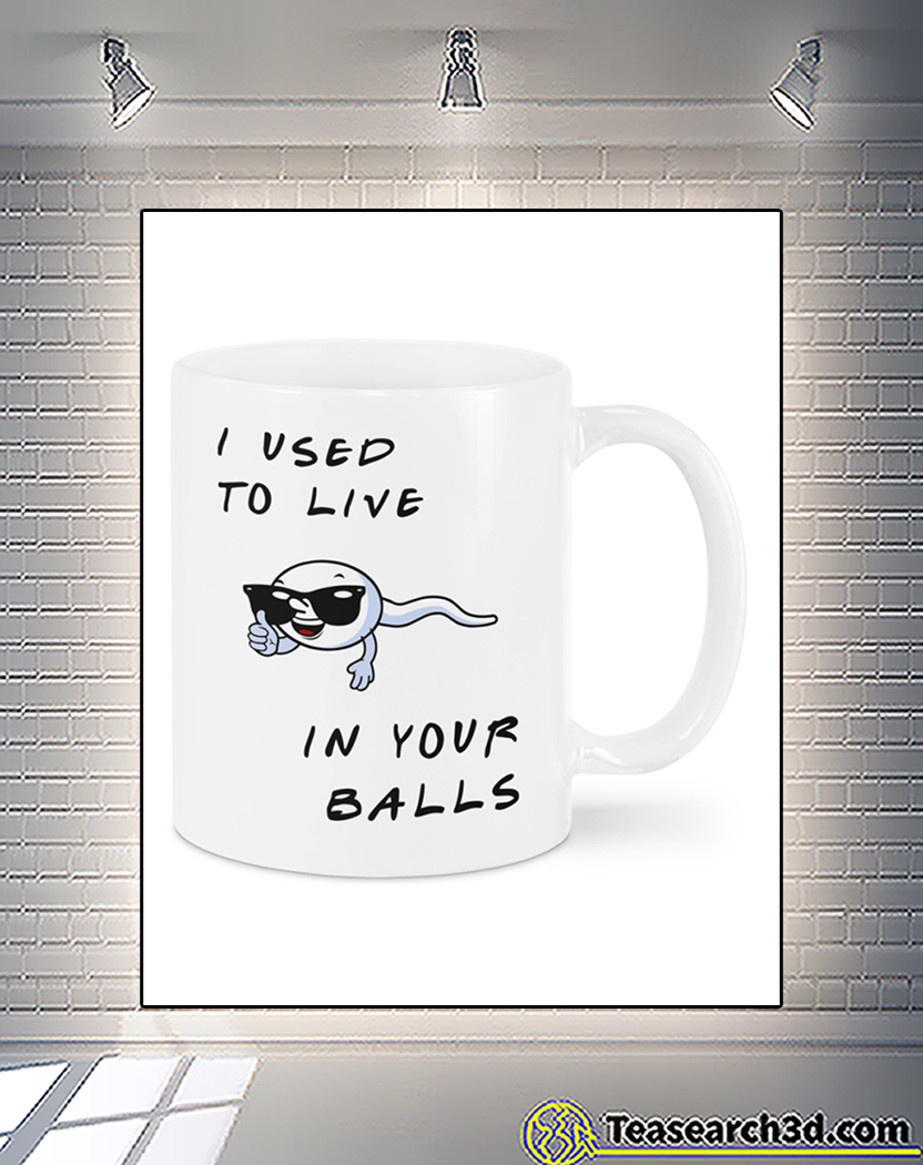I used to live in your balls the best dad mug front