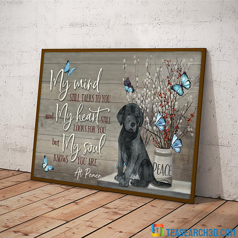 Labrador my mind still talks to you poster A3
