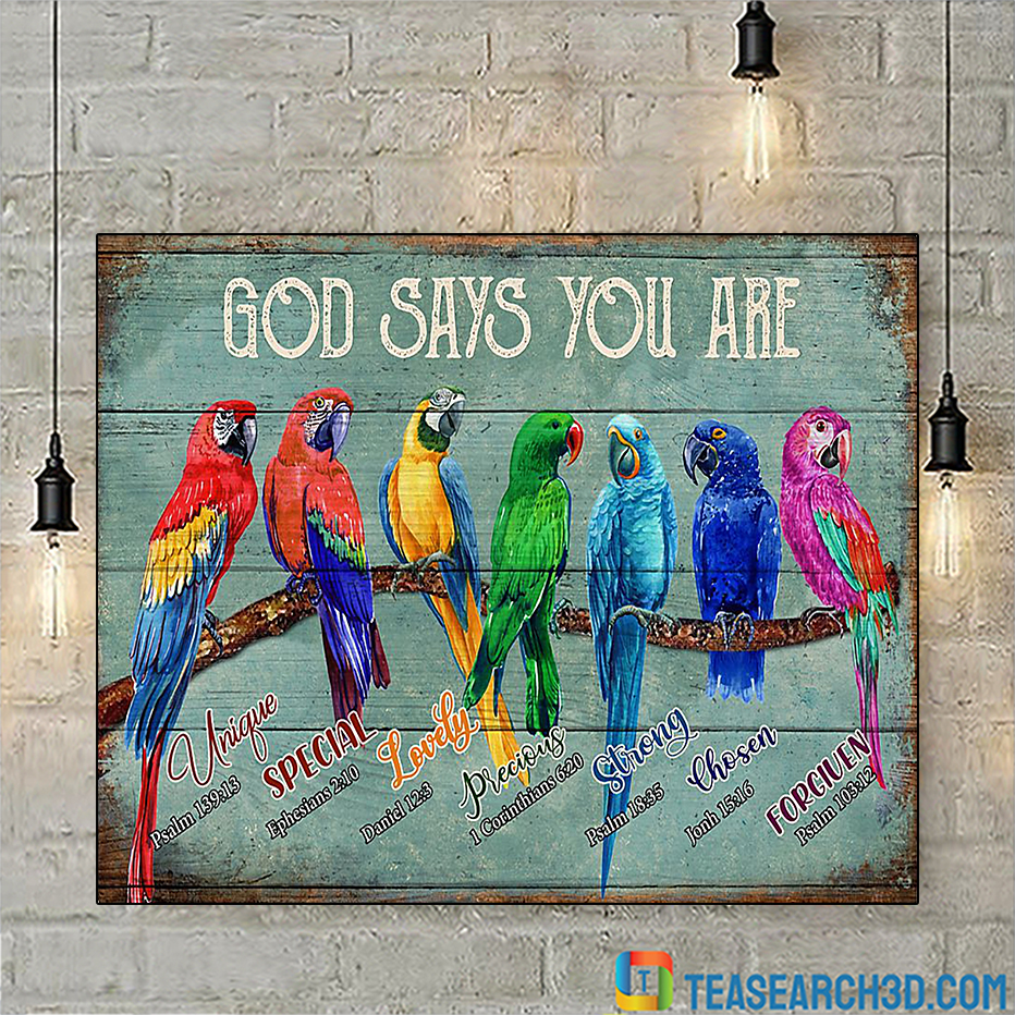 Parrots god says you are poster A3