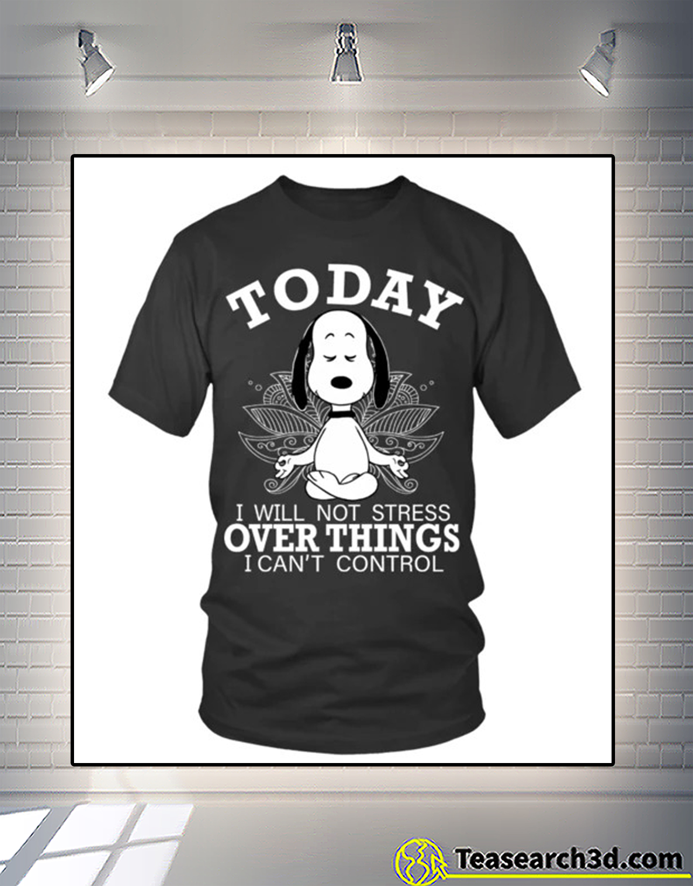 Snoopy today I will not stress over things I can't control t-shirt