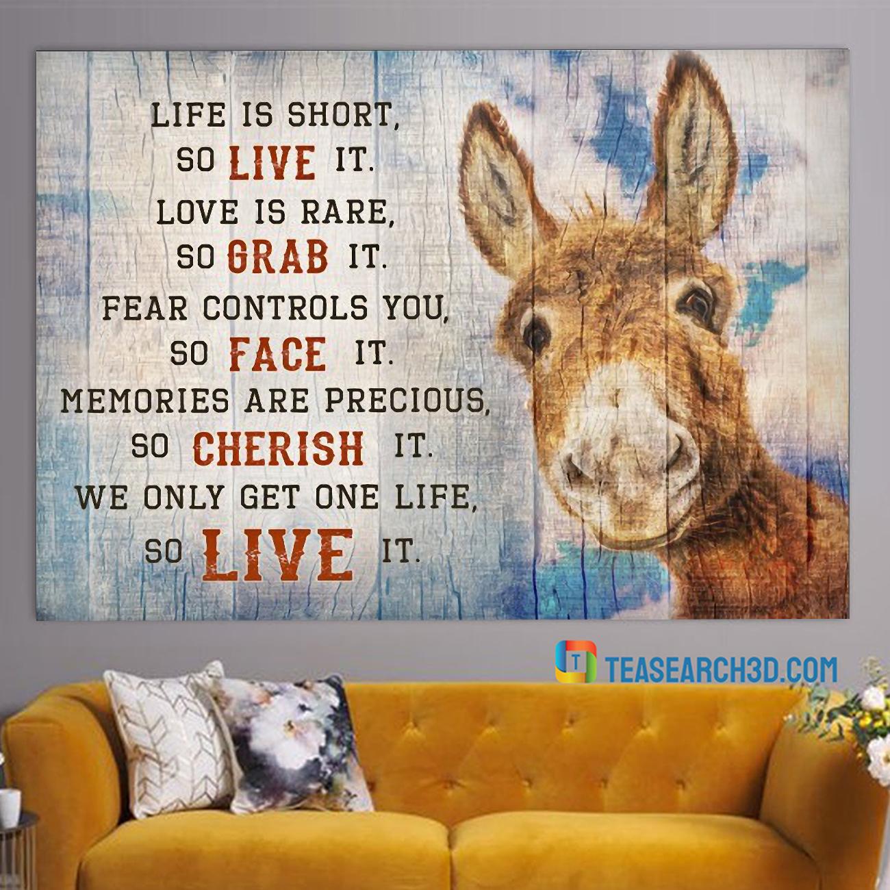 Donkey live is short so live it canvas medium