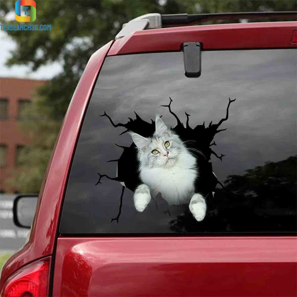 Maine coon crack sticker cats lover 1