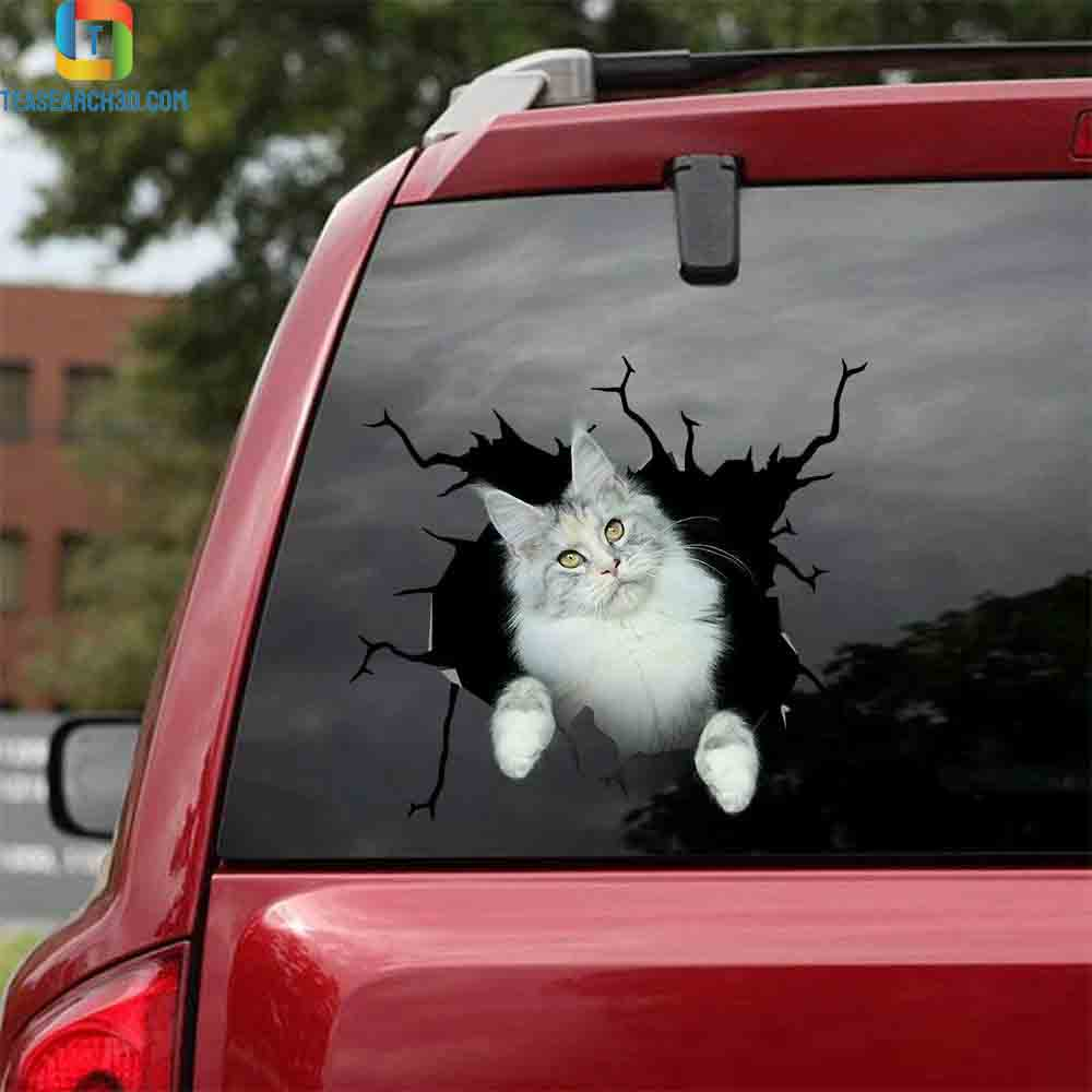 Maine coon crack sticker cats lover