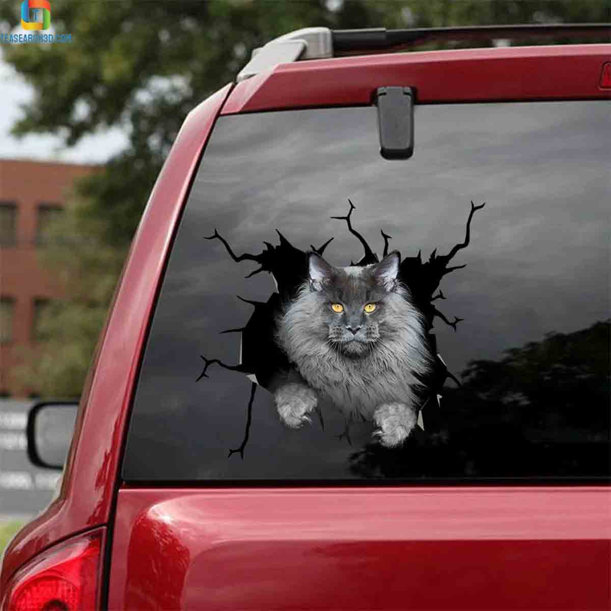 Maine coon gray crack sticker cats lover car decal 1