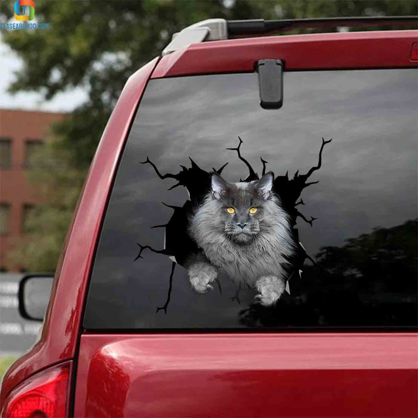 Maine coon gray crack sticker cats lover car decal 2