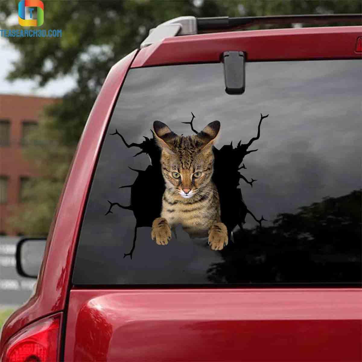 Savannah crack car decal sticker