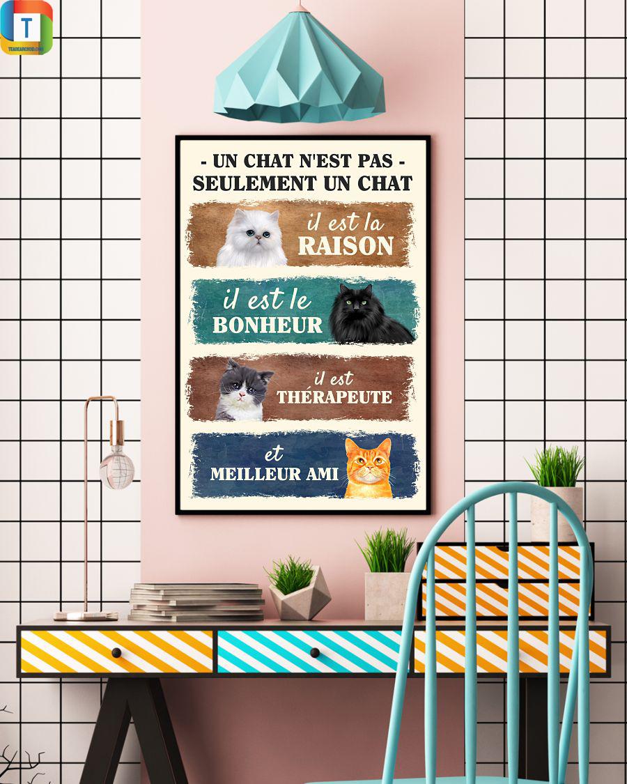 Un chat n'est pas seulement un chat poster 2