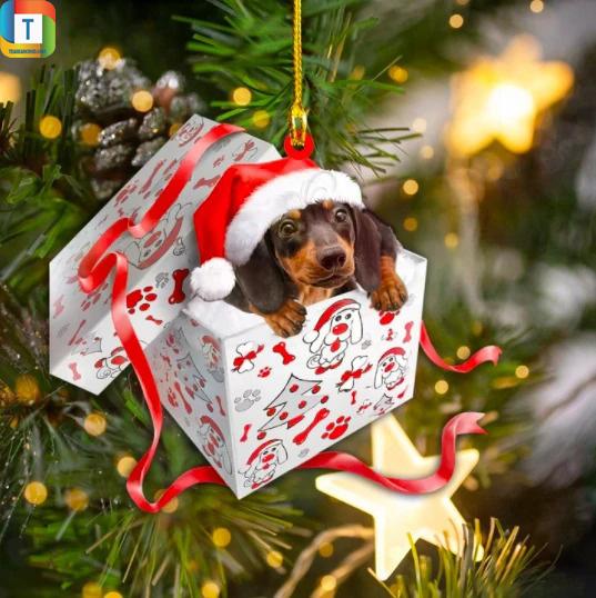 Dashund Christmas Box Gift Ornament